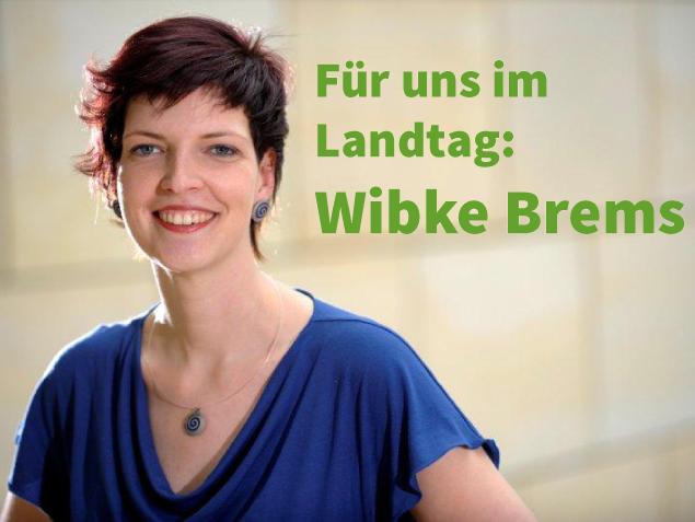 Wibke_Landtag